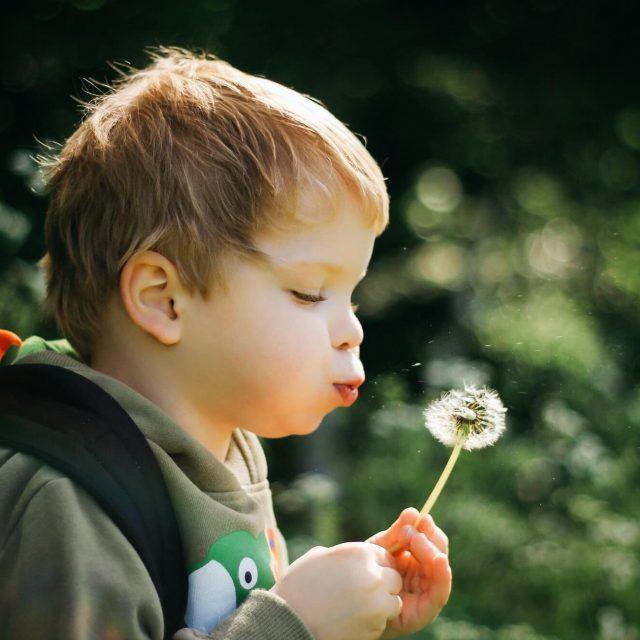 nature natur pojke med blomma vårt ansvar om miljön hållbarhetsstrategi